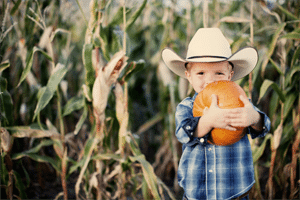 boy-with-pumpkin